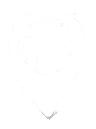 icono